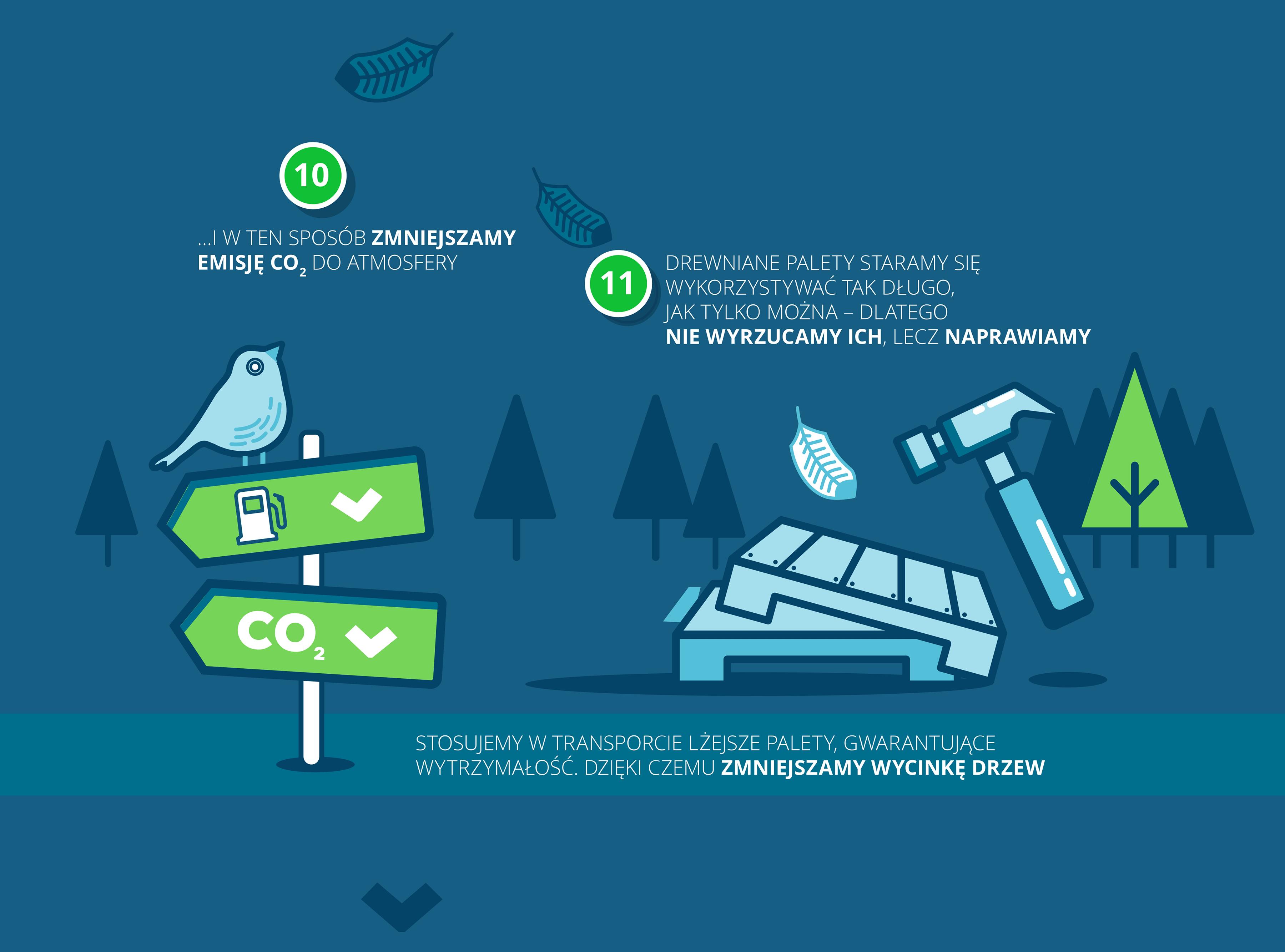 Zrównoważony rozwój 6